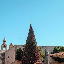 Bethlehem Christmas tree during the holidays