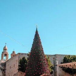 Bethlehem Christmas tree during the holidays