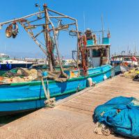 Jaffa Port Ship