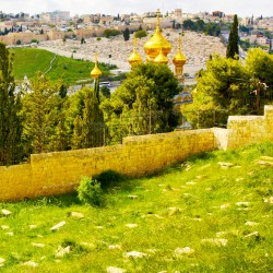 A view of the Mount of Olives in Jerusalem