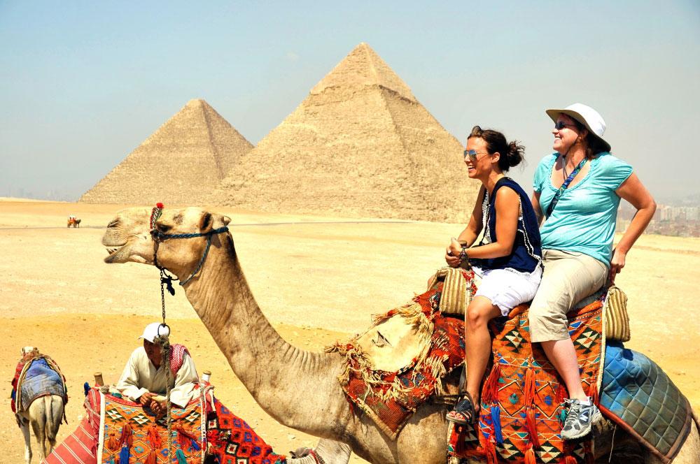 Camellos en un paseo de Egipto