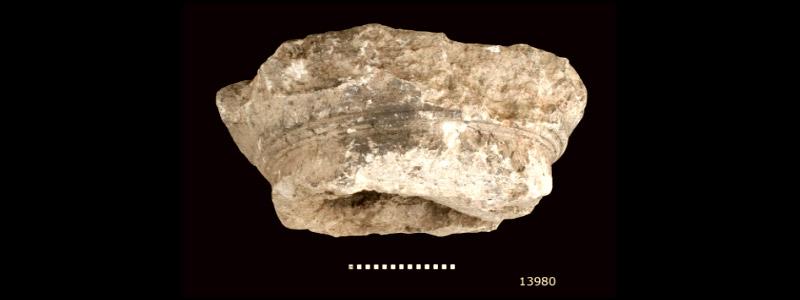 An artefact seen by Jesus