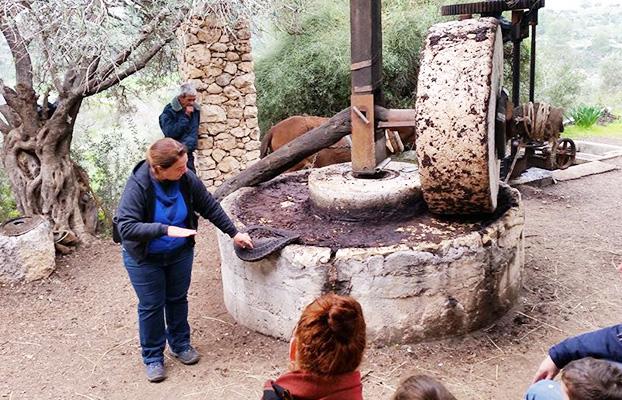 Neot Kedumim is a biblical nature reserve
