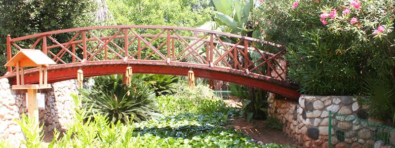 Tel Aviv University's Botanical Gardens