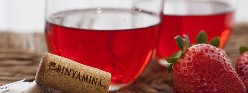 Binyamina Winery